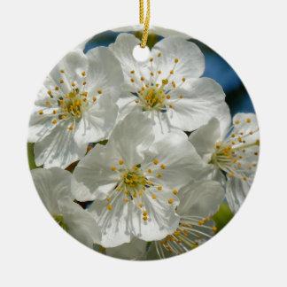 Flores de cerezo, primavera adorno redondo de cerámica