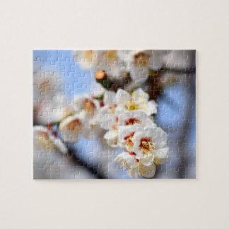 Flores de cerezo puzzle