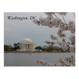 Flores de cerezo: Washington, D.C. Postcard Postal