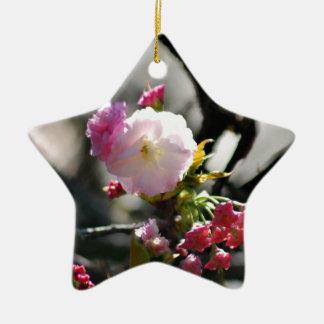 Flores de cerezo y significado ornamento para reyes magos
