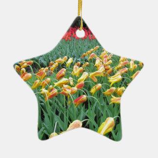 Flores de Holanda Adorno Navideño De Cerámica En Forma De Estrella