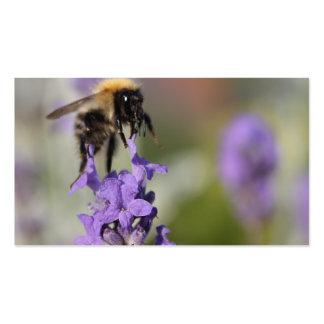 Flores de la abeja y de la lavanda tarjetas de visita