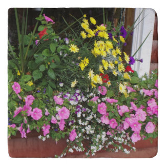 Flores de la caja de ventana salvamanteles