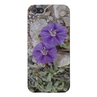 Flores de la grava en Del Río iPhone 5 Protector