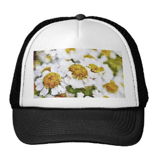 Flores de la margarita blanca - gorra del arte de