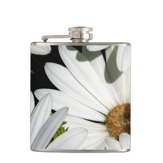 Flores de la margarita blanca petaca