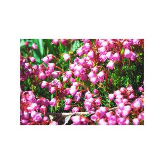 Flores de la montaña impresión en lienzo estirada
