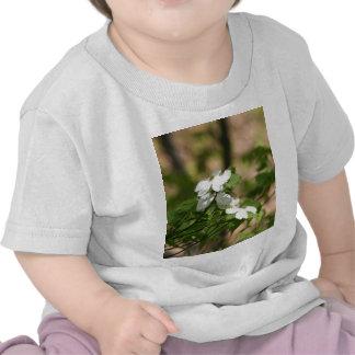flores de la primavera camiseta