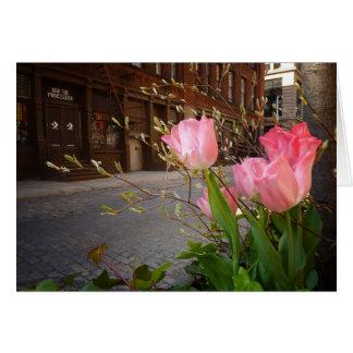 Flores de la primavera en Soho, New York City Felicitaciones