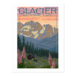 Flores de la primavera - Parque Nacional Glacier,  Postal