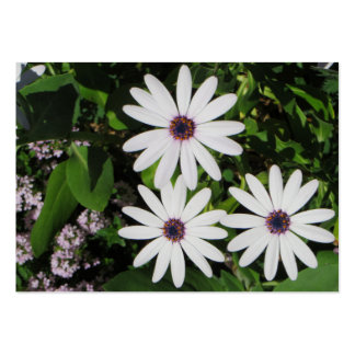 Flores de la primavera tarjetas de visita grandes