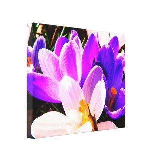 Flores de la púrpura de la primavera lienzo
