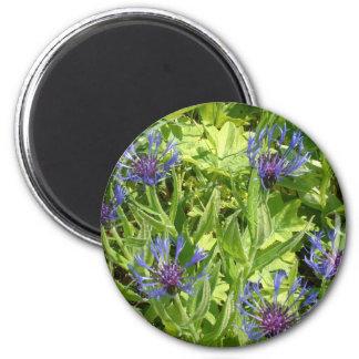 Flores de montaña imán redondo 5 cm