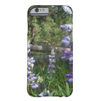 Flores de Montana - Lupine de la montaña Funda Barely There iPhone 6