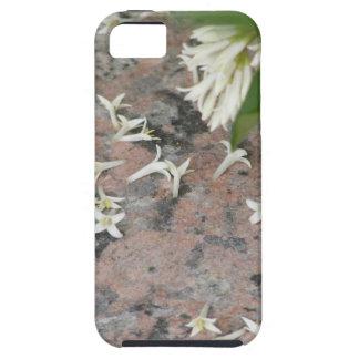 Flores de Privet en el granito iPhone 5 Coberturas