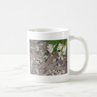 Flores de Privet en el granito Tazas De Café