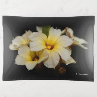 Flores de satén elegantes