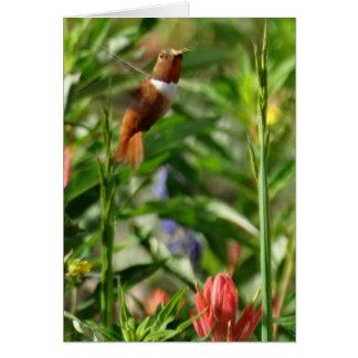 Flores del colibrí tarjeta de felicitación