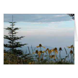 Flores del cono en montañas felicitación