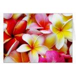 Flores del Hawaiian de la flor de Hawaii del Frang Tarjeta Pequeña