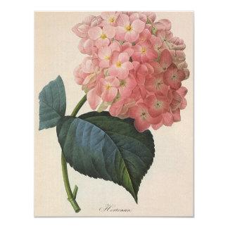 Flores del jardín del vintage, Hortensia rosado Invitación 10,8 X 13,9 Cm