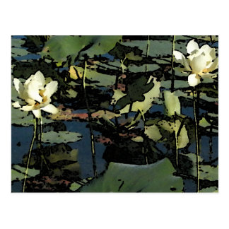 Flores del lirio de agua postal
