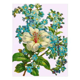 Flores del lirio y de la nomeolvides del vintage postal
