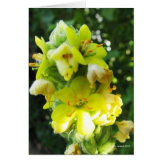 Flores del oído del cordero tarjeta de felicitación