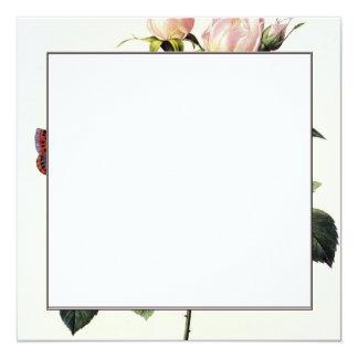 flores del rosa blanco, Pedro José Redouté Invitación 13,3 Cm X 13,3cm