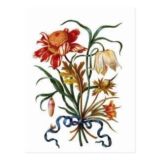 Flores del vintage postal