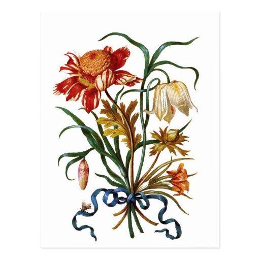 Flores del vintage tarjeta postal