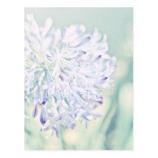 Flores en colores pastel postal