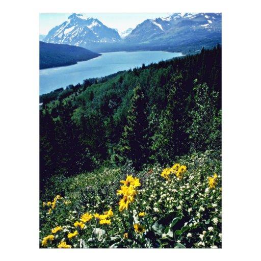 Flores en el lago dos medicine - PA nacional del g Tarjeta Publicitaria