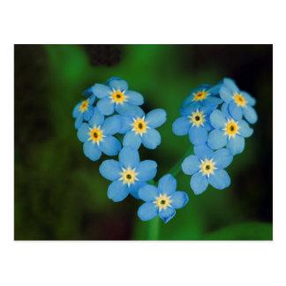 Flores en forma de corazón de la nomeolvides postal