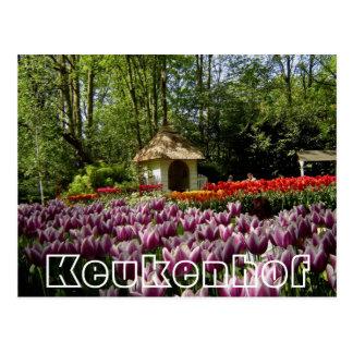 Flores en Keukenhof, casa del jardín Tarjeta Postal