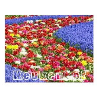 Flores en Keukenhof, corriente colorida Postal