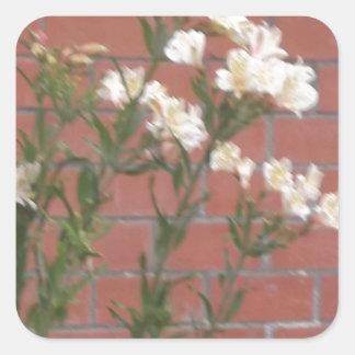 Flores en ladrillo pegatina cuadrada