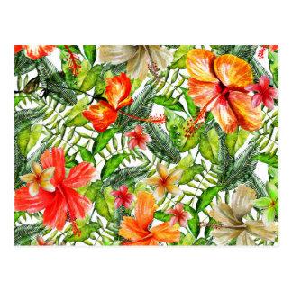 Flores exóticas tropicales de la flor del hibisco postal