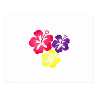 Flores hawaianas postal