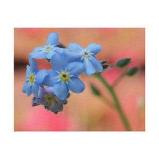 Flores hermosas del azul de la foto del primer lienzo
