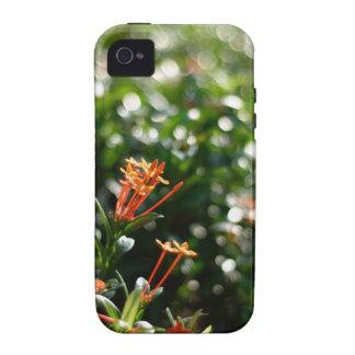 Flores hermosas en el mundo 03 iPhone 4/4S funda