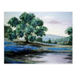Flores inglesas azules del prado tarjeta postal