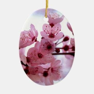 Flores japoneses del cerezo adorno