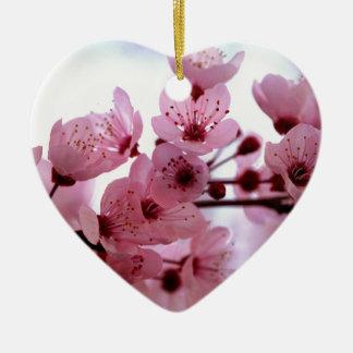 Flores japoneses del cerezo ornamente de reyes