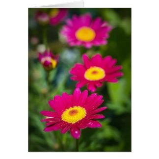 Flores magentas tarjeta de felicitación