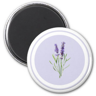 Flores púrpuras bonitas de la lavanda imán