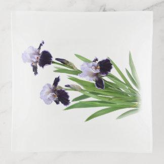 Flores púrpuras del iris barbudo