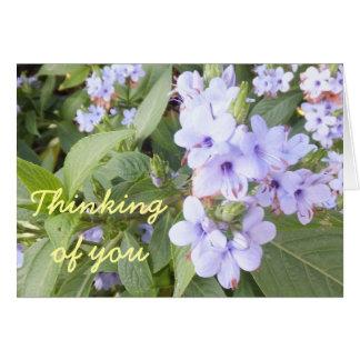 Flores púrpuras en las hojas verdes que piensan en tarjeta de felicitación