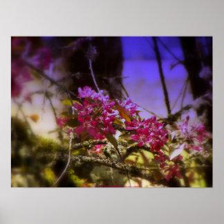 """flores """"radiantees"""" rojos #1 de la manzana de cang impresiones"""