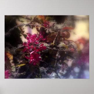 """flores """"radiantees"""" rojos #2 de la manzana de cang impresiones"""